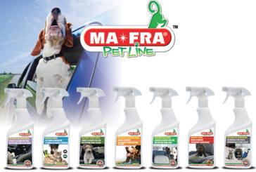 Eliminare odore di pipì di gatto e cane: in auto o a casa, con la Pet Line è ora facile e veloce!