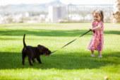 Arriva un Cucciolo – La linea Pet di Mafra
